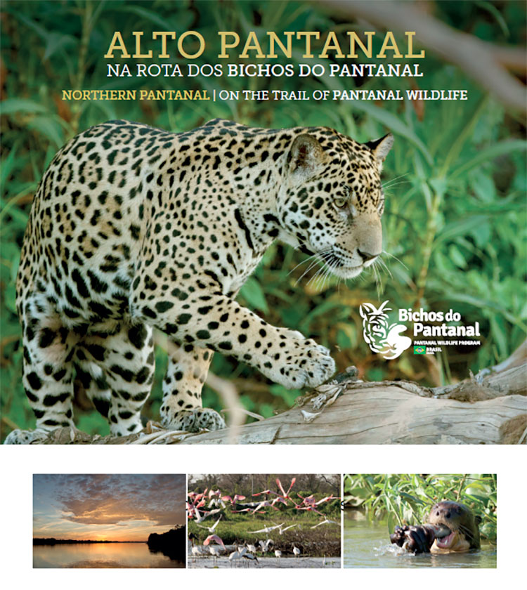 EBook-Alto Pantanal, along the route of the Wildlife in the Pantanal